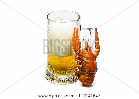 Red Boiled Lobster Is Raises A Goblet Of Fresh Beer