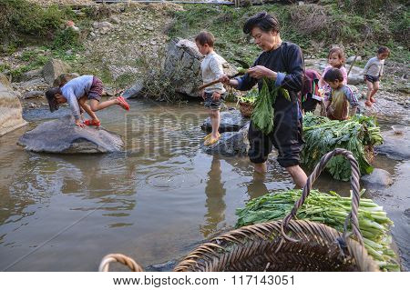 Asian Cleans Lettuce, Standing Knee-deep In Countryside River, Guizhou, China.
