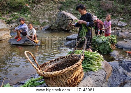 Chinese Woman Washes Leaves Of Edible Plants In Rural River.