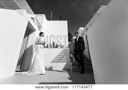 Handsome Groom And Happy Brunette Bride Posing Near Stairs In Town B&w