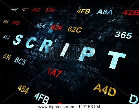 Software concept: Script on Digital background