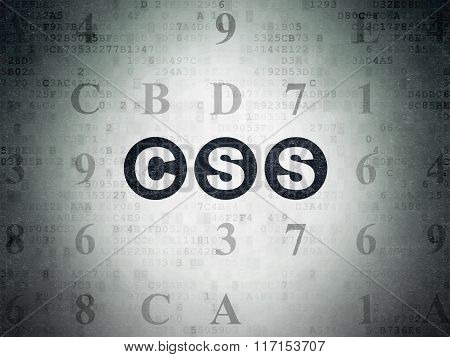 Software concept: Css on Digital Paper background