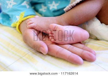 Baby Feet In Mom Hand.