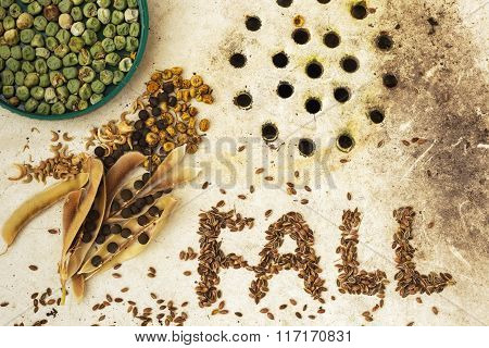The Surface Of The Old Sink With Seeds And Peas. Text Fall Made From Seeds