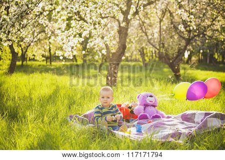 Little Baby Boy Playing Toys Sitting On Long Green Grass Outside
