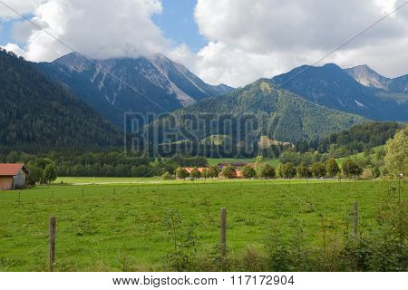 Landscape in the Alps with fresh green meadows and blooming flowers and snowcapped mountain  tops