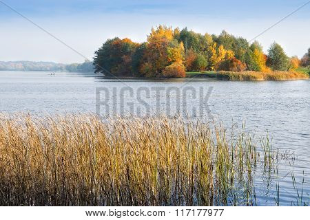 lake elk in autumn
