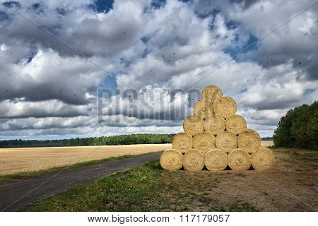 pile of haystacks