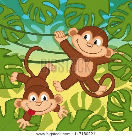 monkey in jungle