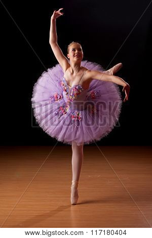 Young Ballerina In Studio Practising