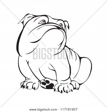 Dreamy Bulldog