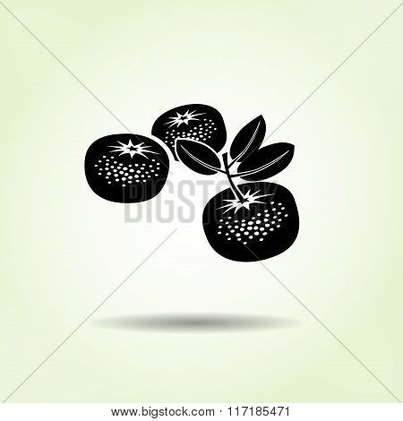 Mandarin icon. Three fruits, leaves. Black silhouette with shadow on light green backdround. Flat de