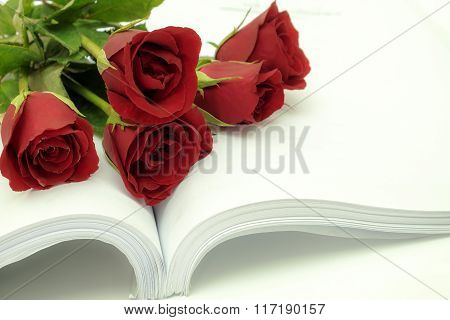 Red rosed with book on wood background.