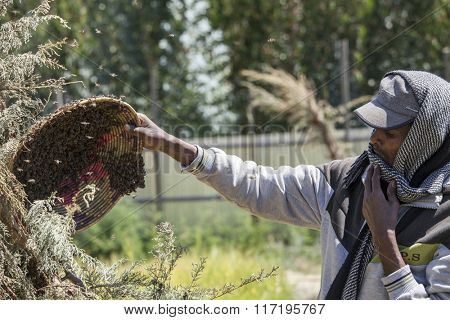 OROMIA, ETHIOPIA-NOVEMBER 6, 2014: Unidentified beekeeper without protective clothing tends to his bees in Ethiopia.