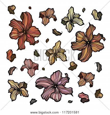 Collection of outline abstract flowers