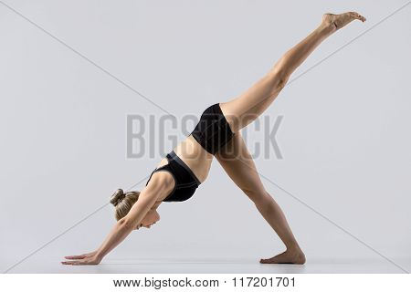 One-legged Downward-facing Dog Pose
