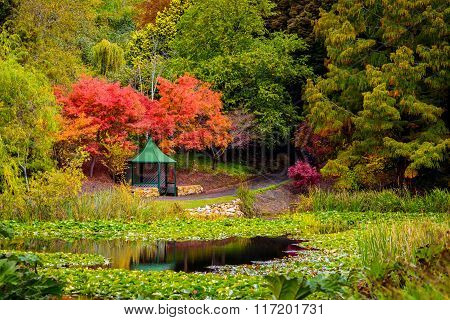 Gazebo In The Autumn Park By The Pond