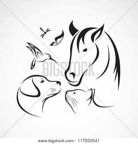 Vector Group Of Pets - Horse, Dog, Cat, Bird, Butterfly, Dragonfly Isolated On White Background