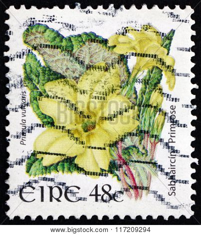 Postage Stamp Ireland 2004 Primrose, Flowering Plant