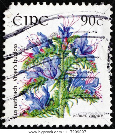 Postage Stamp Ireland 2006 Viper's Bugloss, Flowering Plant