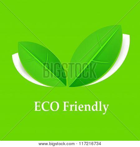 Eco Friendly Background
