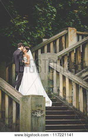 Elegant Stylish Young Bride And Groom Kissing On The Stairs