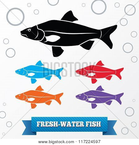 Fish icon. Food symbol. Cyprinidae family Crucian . Fresh-water, fish color signs with label on whit