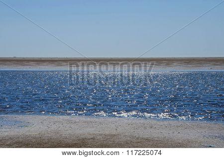 Summer at the wadden sea, Denmark