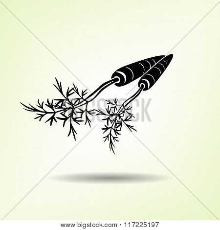 Carrot icon. Two vegetables, leaves. Black silhouette with shadow on light green backdround. Flat de