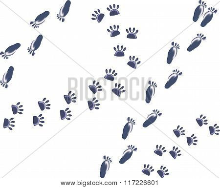 Set of abstract ice footprints of man and cat. EPS10 vector illustration