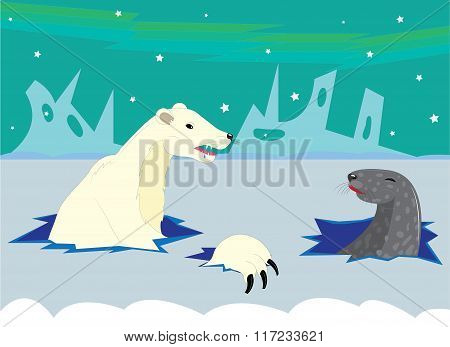 The polar bear hunts on a seal.