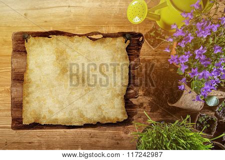 Gardening tools and flowers on wooden background, close-up.