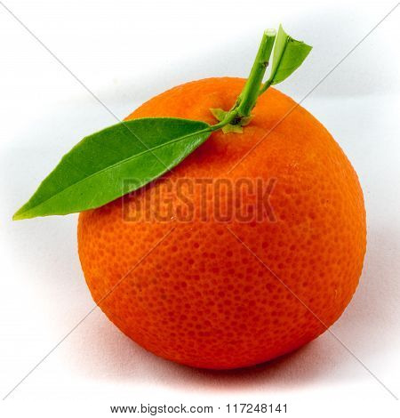 Clementine Fruit