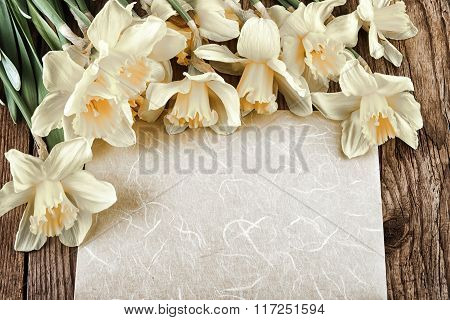 Daffodil flowers with paper sheet Vintage Style