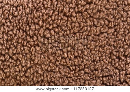 Woolly sheep fleece texture - furry background