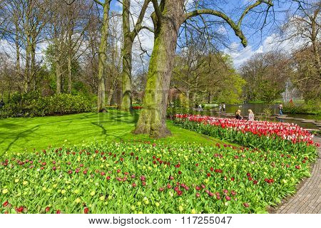 Spring scenic in the Keukenhof Garden, Netherlands.