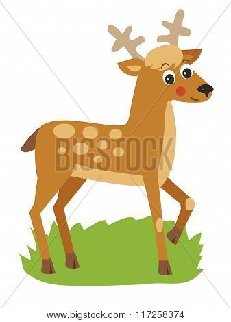 Young Deer With Horns. Vector Animal Illustration, Just A Good Picture. Young Deer Buck. Young Deer Picture. Young Deer Alone. Small Deer With Horns. Tiny Deer With Horns. Young Deer meme.