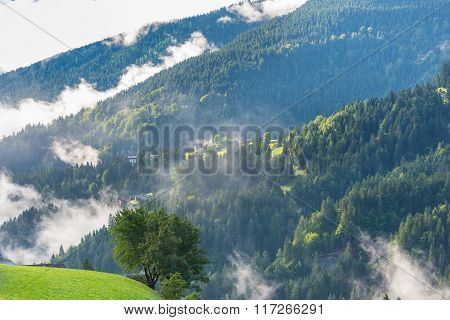 Green Forest Mountains In The Foggy Morning