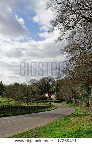 Country Lane,uk
