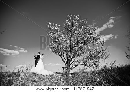 Charming Bride In A Wreath And Elegant Groom On Landscapes, Near Yellow Tree