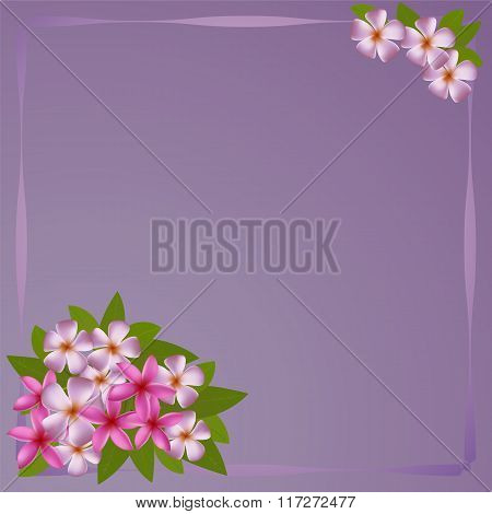 Postcard with bouquet of the plumeria