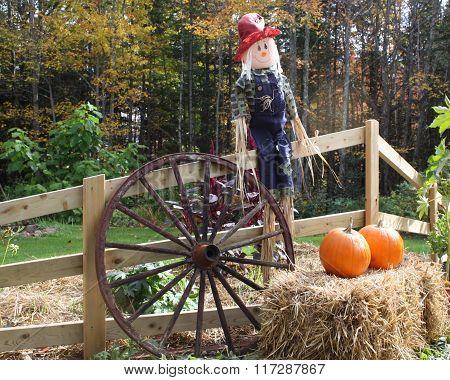Decorative Scarecrow