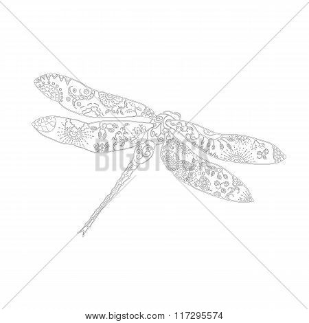 Zentangle style vector illustration of dragonfly isolated on white