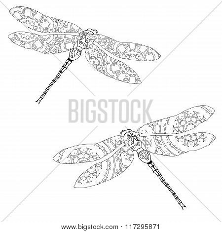 Set of two zentangle style dragonflies isolated on white
