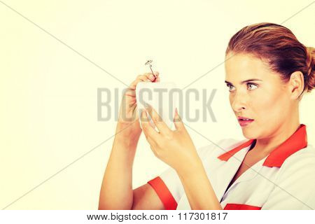 Young female dentist holding a tooth model and dental mirror