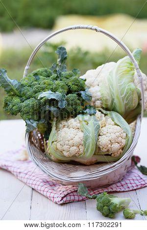 cauliflower on old table