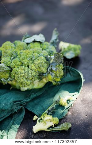 broccoli vegetables on old table