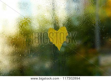 Heart shaped leaf on wet glass