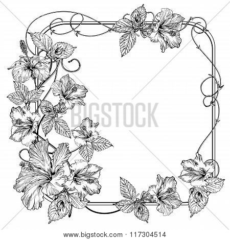 Clematis flower. Vintage elegant flowers. Black and white vector illustration. Botany. Vector