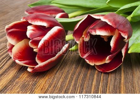 beautiful bouquet of red tulips on wooden background